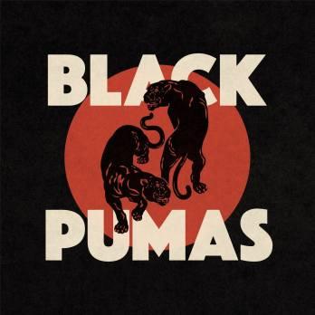 799d65-20200103-black-pumas-black-pumas